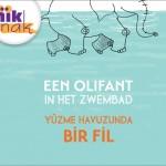 Olifantinhetzwembad_Turks